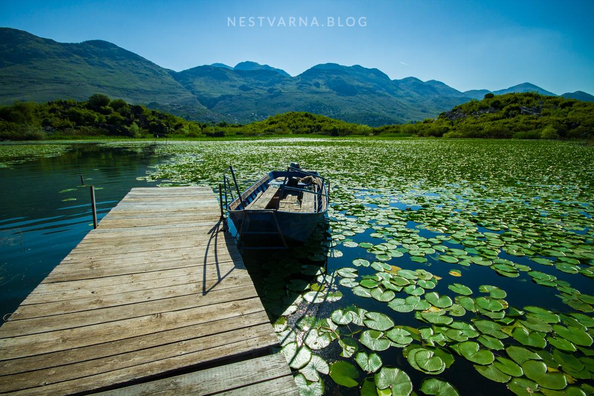 Skadarsko Jezero 2016-49